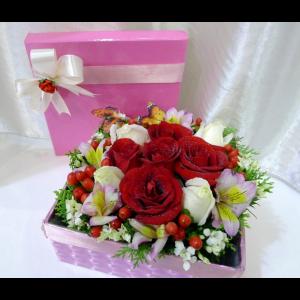 BOX-005-1-1024x872