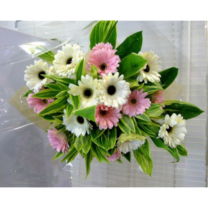 HB-G116-Pastel-Blooms