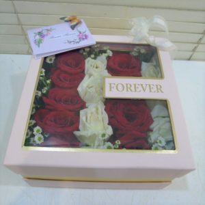 BOX-010-1