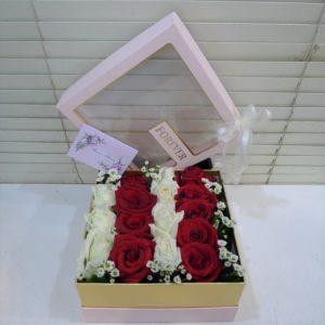 BOX-010