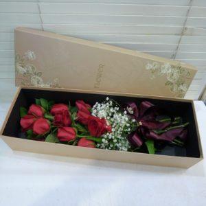BOX-011