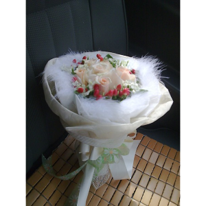 HB-R07-Fairy-Beauty